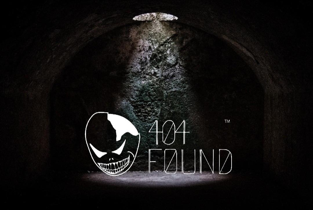 404 found logo