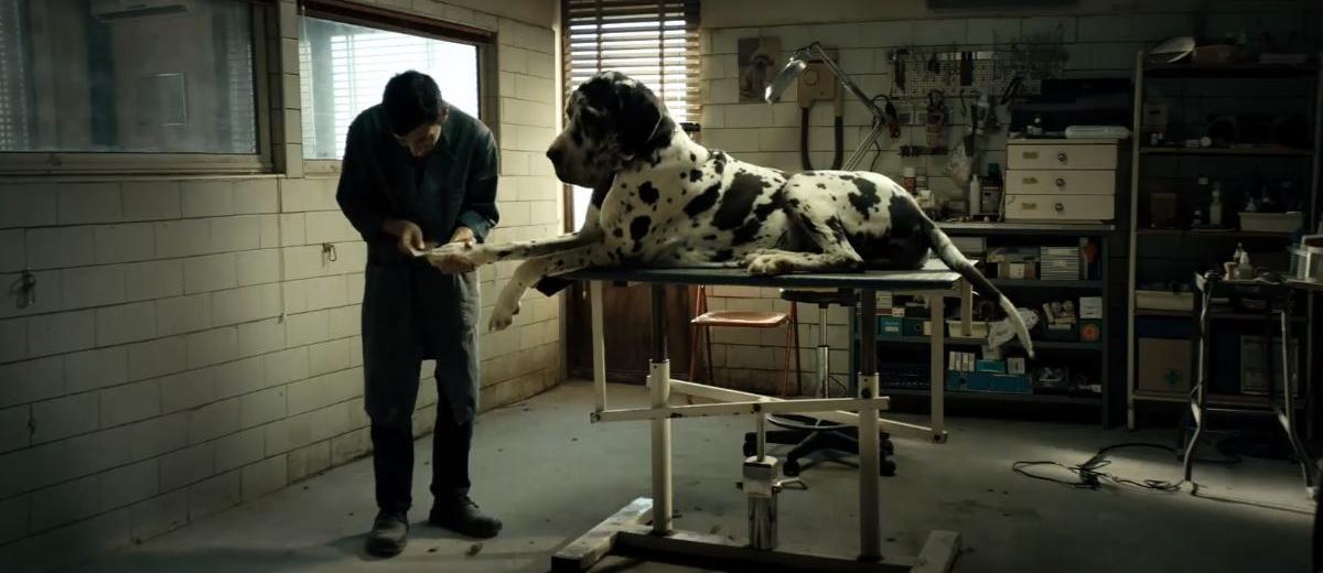 Marcello-fonte-canaro-dogman